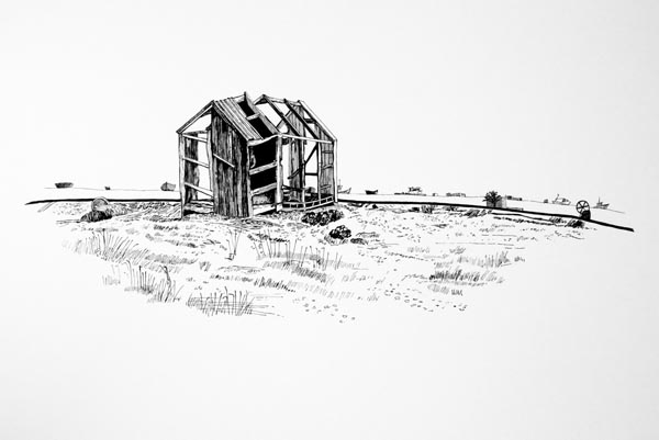 The Shed Skeleton Ink Drawing. jpg