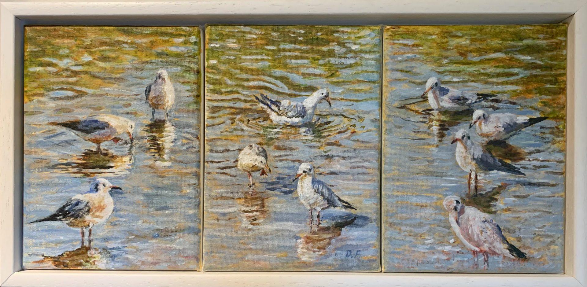 REFLECTIONS BY DEBBIE FARQUHARSON